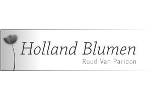 Holland Blumen