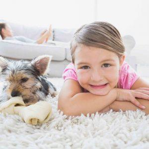 Teppichreinigung mit Abhol- und Lieferdienst