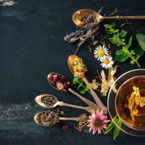 Heißer Tee – Ihr Begleiter durch den Herbst