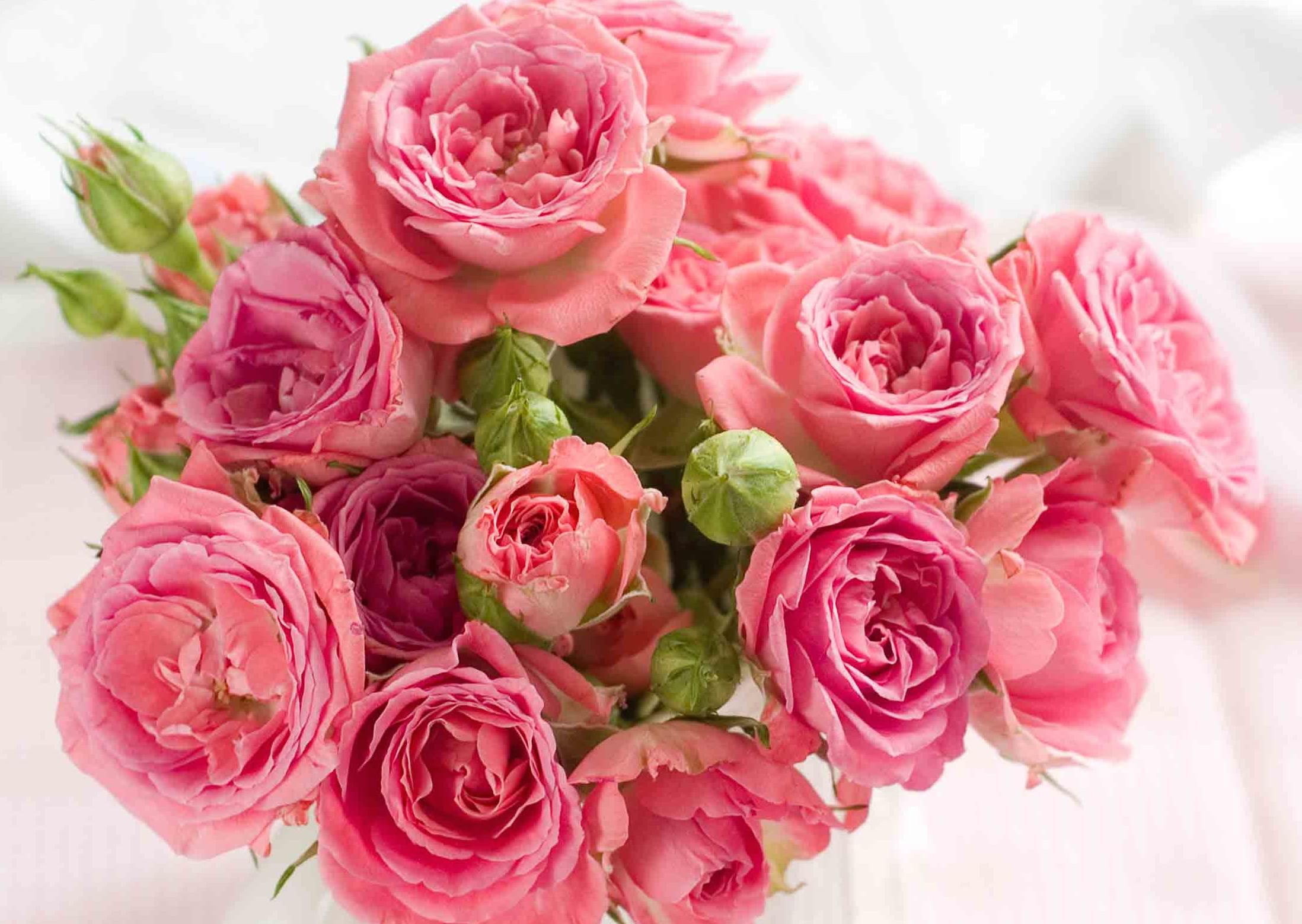 Jede Frau ist wie eine Blume